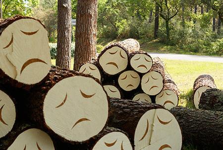 trees sad