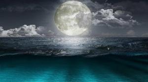 mystic night, image